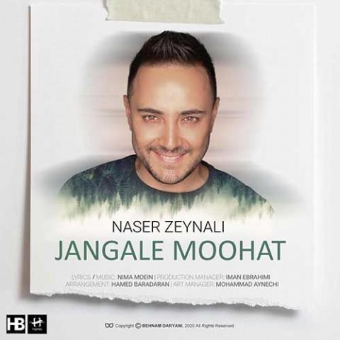 ناصر زینعلی جنگل موهات، دانلود آهنگ جدید ناصر زینعلی جنگل موهات + متن ترانه