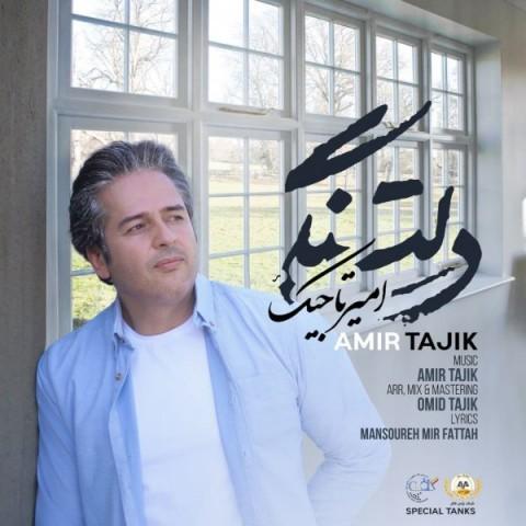 امیر تاجیک دلتنگی، دانلود آهنگ جدید امیر تاجیک دلتنگی + متن ترانه